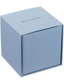 Zegarek męski Skagen SKW6356